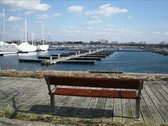 Bench by the Water NTSC Stock Footage