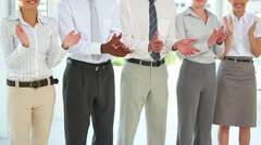 Business group standing in a line Stock Footage