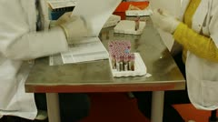Blood sample sorting in medical laboratory - stock footage