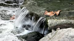 Water, stones and leafs Stock Footage