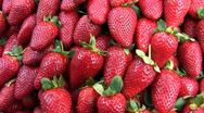Bunch of fresh strawberries Stock Footage