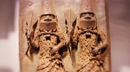 Benin cast bronze Stock Footage