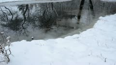 March pond in the farm and snow Stock Footage