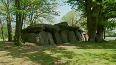 La Roche-aux-Fees (Fairies Rock) – Brittany France Stock Footage