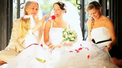 Portrait Caucasian Family Group Young Bride  Stock Footage