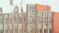 Windy weather with building in the back Stock Footage