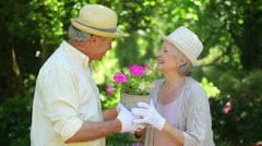Mature couple holding a flowerpot together Stock Footage