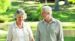 Smiling mature couple walking in front of a lake Stock Footage