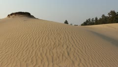 Sand dune in a desert Stock Footage