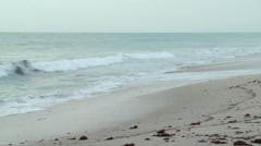 Nature Scenic   pan of beach in the morning 04052012-1 -- H264 Stock Footage