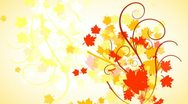 Autumn Leaves Flourish Background 01 HD Stock Footage
