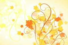 Autumn Leaves Flourish Background 02 Stock Footage