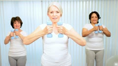 Mature Ladies Muscle Toning Lifting Weights - stock footage