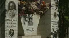 Faces from the past cemetery (2 clips) Stock Footage