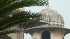 Tower of the colonial fort in Lahore behind a fern tree - stock footage
