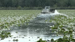 Water, Aquatic weed cutting machine chops through Fragrant Water Liiy in Florida Stock Footage