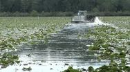 Stock Video Footage of Aquatic weed cutting machine chops through Fragrant Water Liiy in Florida