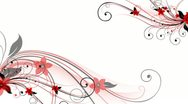 Stock Video Footage of Red Black Flourish Background 02 HD