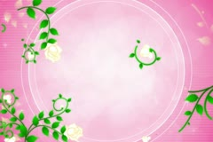 Roses DeVine Flourish Background 02 Stock Footage