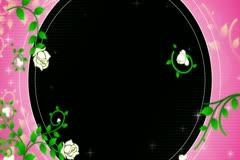 Roses DeVine Flourish Overlay Widescreen Stock Footage