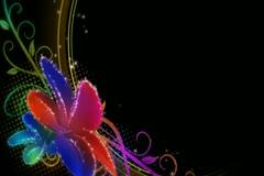 Vibrant Flourish Overlay Widescreen Stock Footage