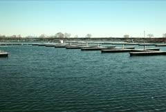 Wooden Docks NTSC Stock Footage