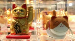 Maneki even closer Stock Footage
