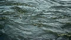 Water River Flow Stock Footage