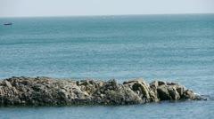 Ocean water surface and rock reef coastal,algae,seaweed,ebb,horizon,skyline. Stock Footage