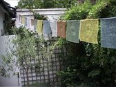 Tibetan prayer flags pull focus Stock Footage