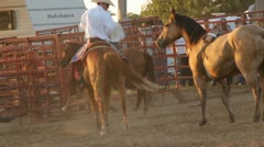Stock Footage - Leading horse to fence Stock Footage