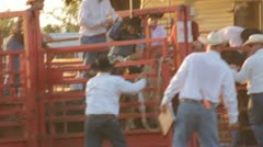 Stock Footage - Bronco Horse Rider - Getting Bucked - Hand gets stuck Stock Footage