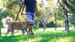 Dog and his owner walking in the park Stock Footage