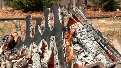 Stock Video Footage of Blazing campfire
