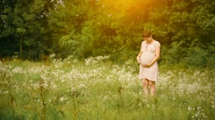 Pregnant woman in the chamomiles at sunset Stock Footage