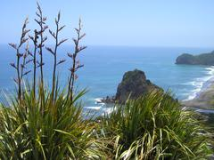 Piha Beach, New Zealand - stock photo