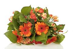 bouquet of orange flowers on a white background - stock photo
