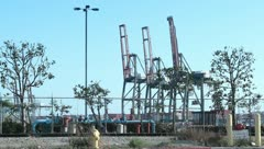 3 cranes medium close Stock Footage