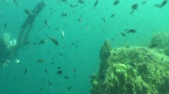 Pond5 125 - stock footage
