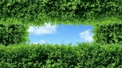 Nature Stock Footage