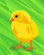 Chicken on the green Stock Illustration