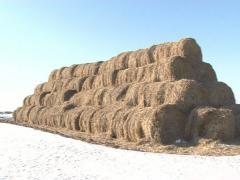 Rolled straw stack snow Stock Footage