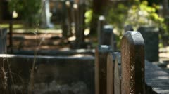cemetery-9375 - stock footage