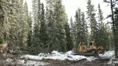 Heavy tracked bulldozer knocking down trees on a gold mine in Alaska HD217 Stock Footage