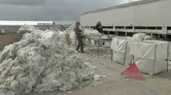 Wool inspection for shipping and sale P HD 9665 Stock Footage