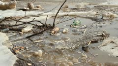 Stock Video Footage of Contamination Of The Environment. Rubbish On Nature