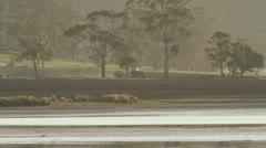 Sand Spit Lagoon near Orford with tractor. Stock Footage