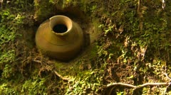 History & culture, Barill culture pottery, imbedded in earth wall Stock Footage