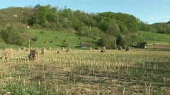 Serbia Countryside Stock Footage