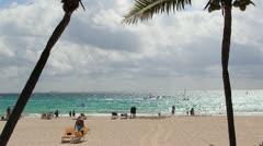 Light Beach with Palm Tree - stock footage